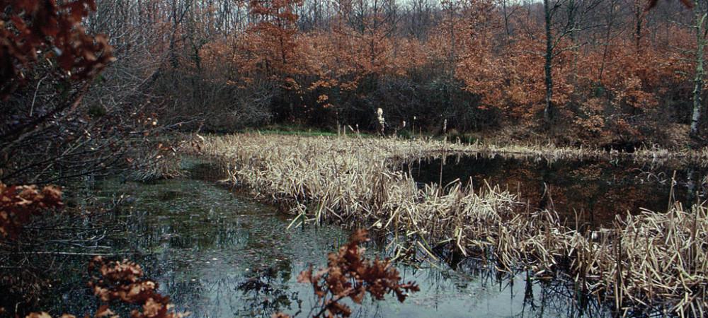 Lago in ambiente boschivoRiserva Naturale Monte Rufeno, Acquapendente (anno 1994)