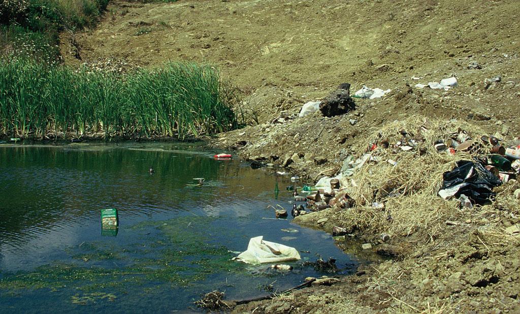 Distruzione di una pozza con interramento e discarica di rifiuti.  Magliano in Toscana, Grosseto (anno 1994)