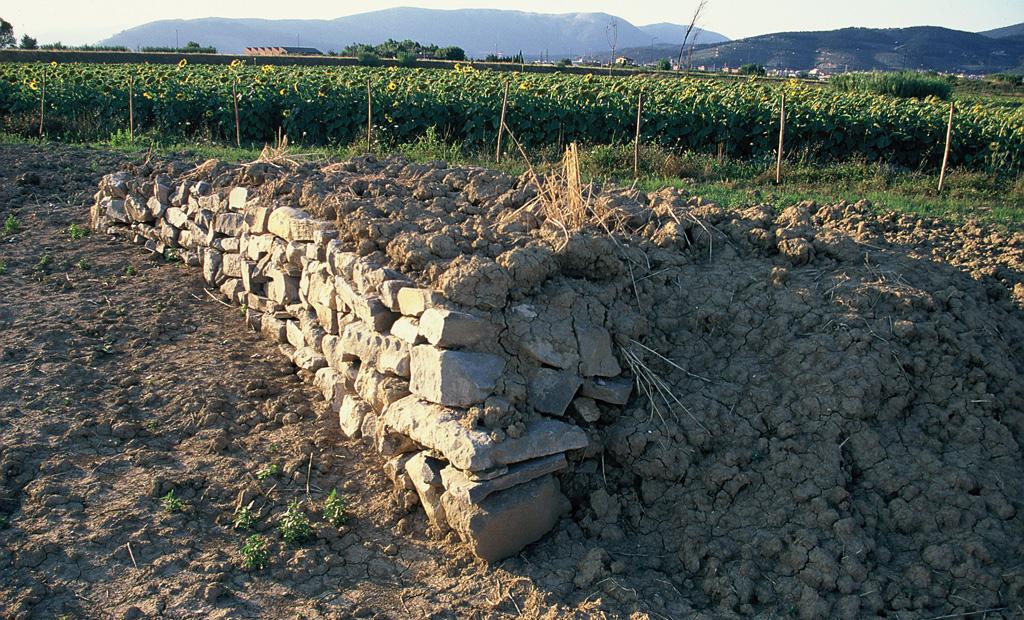 Microrifugio per lo svernamento e l'estivazione realizzato da volontari. Oasi WWF Val di Rose, Sesto Fiorentino, Firenze (anno 1996)