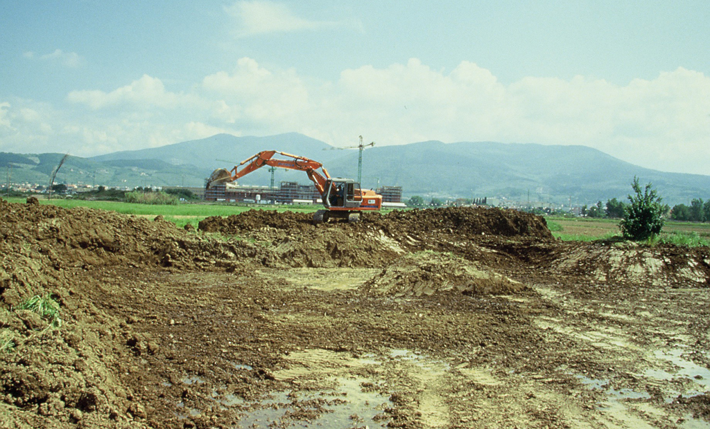 La nascita dell'Area Erpetologica Protetta e Oasi WWF Val di Rose (1996)