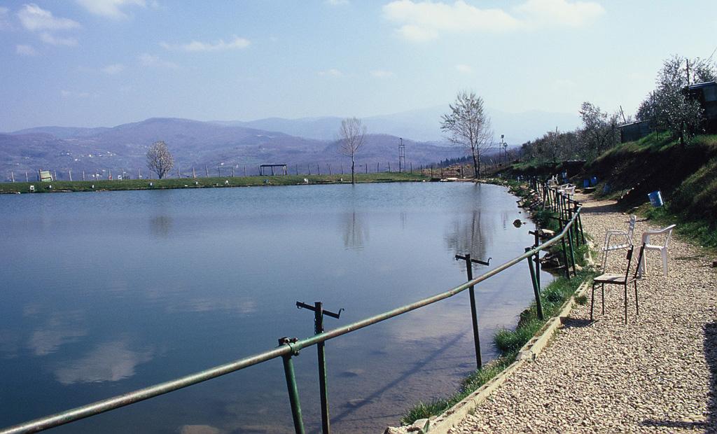 Il problema dell'immissione di pesci. In questo caso un bacino lacustre trasformato in lago da pesca.A parte il Rospo (Bufo bufo) tutte le altre specie di Anfibi non possono più utilizzare l'area come zona riproduttiva proprio per la presenza di pesci