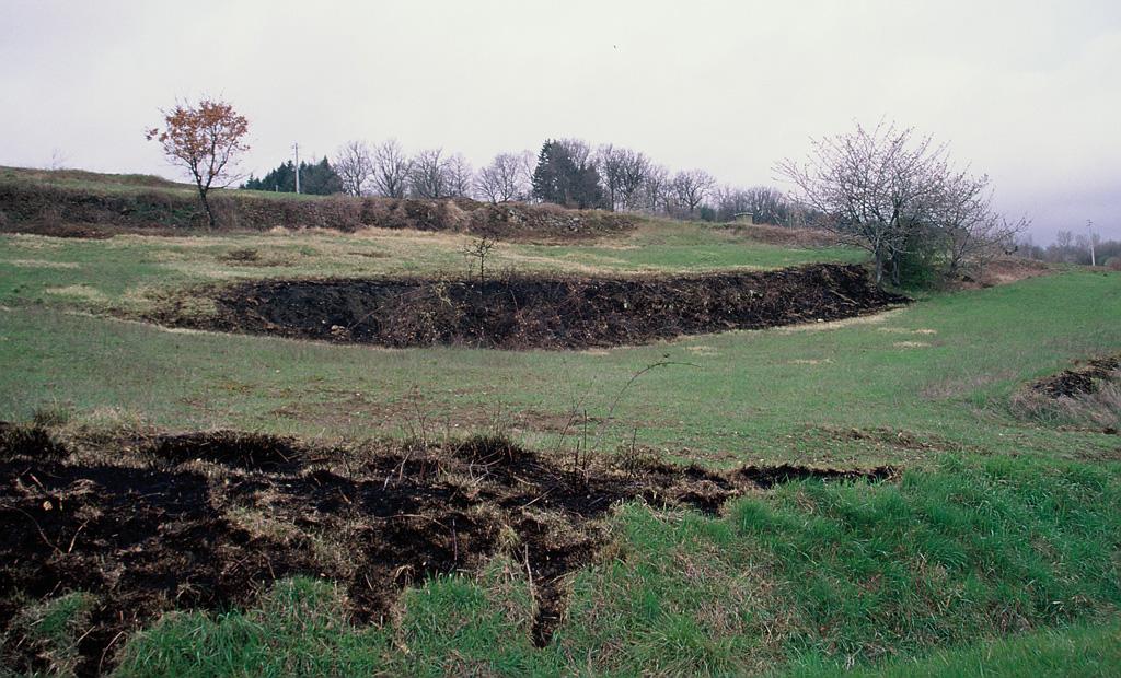 L'uso del fuoco sulle fasce marginali dei campi agricoli è causa del forte impoverimento delle caratteristiche ecologiche adatte alla presenza delle specie faunistiche.