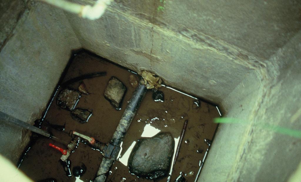 Una cisterna lasciata aperta a livello del piano di campagna è divenuta una trappola a caduta per gli Anfibi: sul fondo alcuni individui di Rospo (Bufo bufo). Castelnuovo Val di Cecina, Pisa (anno 1994)